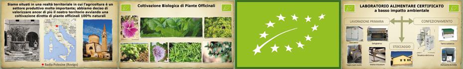 azienda agricola biologica tra la terra e il cielo